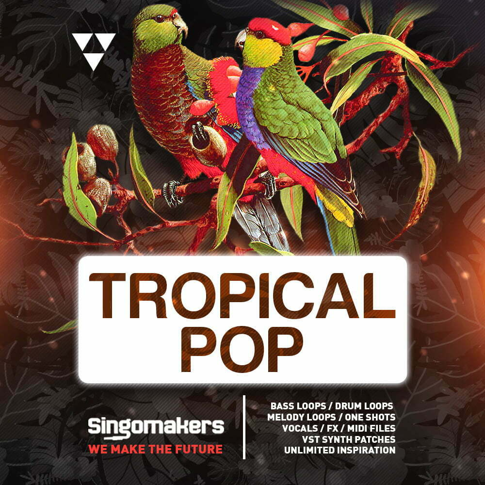 Singomakers_Tropical_Pop_Bass_Loops_-Drum_Loops-_Melody_Loops_One_Shots_Vocals_-Fx_-Midi_Files_VST_Synth_Patches_1000-1000